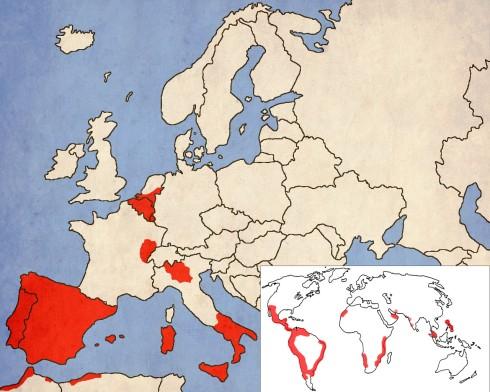 Вървейки една крачка пред баща си, Фелипе заменя Европа за Света